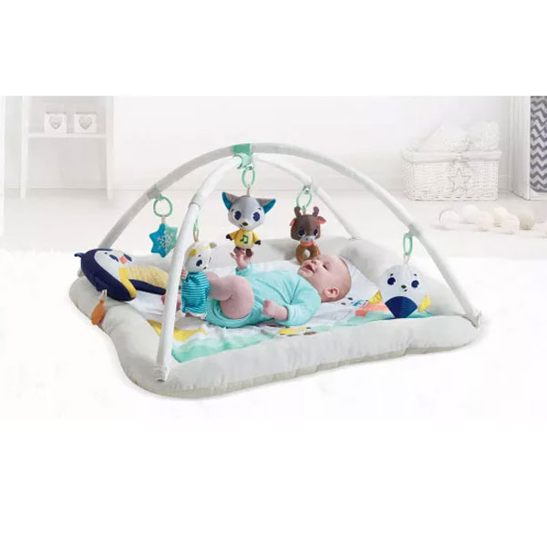 Tapis de Jeu Tiny Love Polar Wonders